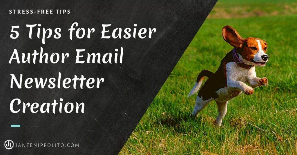 A small beagle leaping into the air to show the triumph over email newsletters