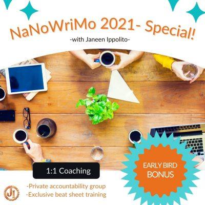 NaNoWriMo 2021 FINAL